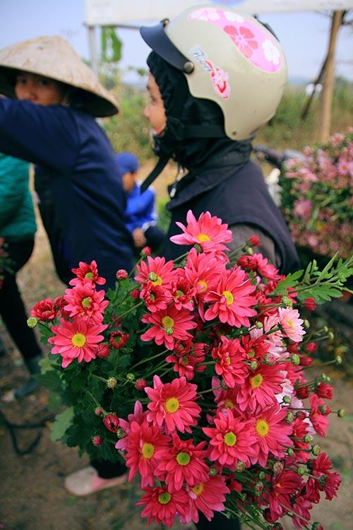 Ngắm phiên chợ độc đáo ở làng hoa Tây Tựu-14