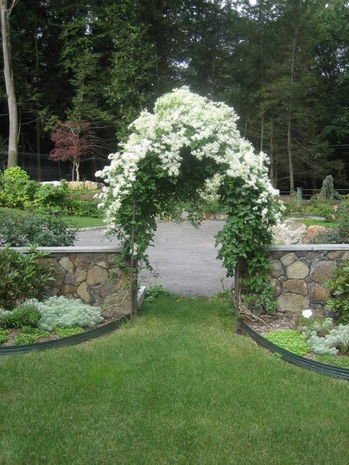 Vườn 4000m2 trăm hoa đua nở quanh năm ở New York-10
