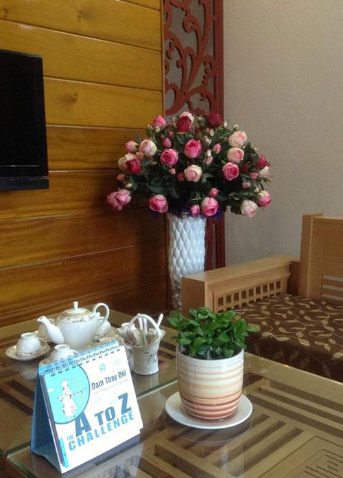 yen bai: ban nha pho, mua nha ngo de trong 100 cay hoa - 7