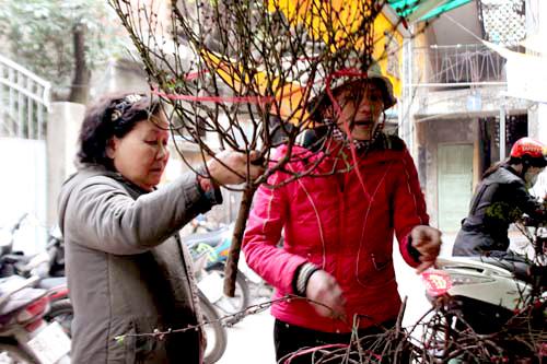 sau ram thang chap: canh dao mini xuong pho ron rang - 4