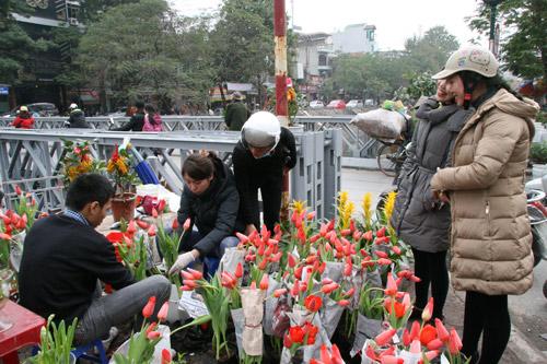 tulip viet gia 30 nghin hut nguoi mua - 5