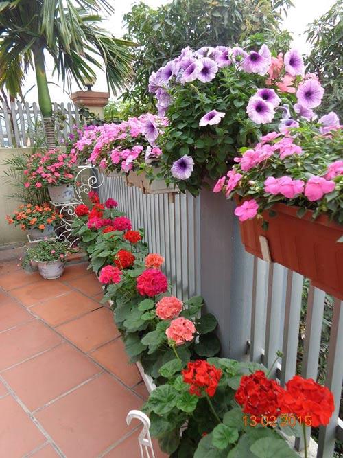 tinh yeu 'an hoa, ngu cung hoa' cua co giao quang ninh - 3