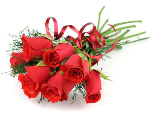 chon qua tang dap lai tinh yeu ngay valentine trang - 1