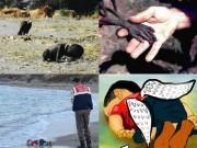 Làm mẹ - Lặng ngắm những bức ảnh trẻ em gây ám ảnh nhất thế giới