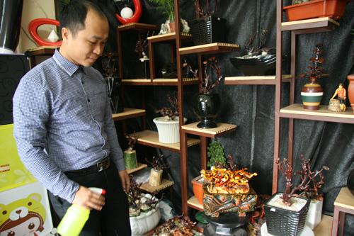 dan tinh lung suc mua nam linh chi bonsai tien trieu - 4