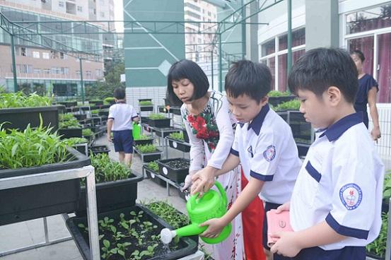 Bé trường tiểu học trồng rau sạch bán cho phụ huynh-2