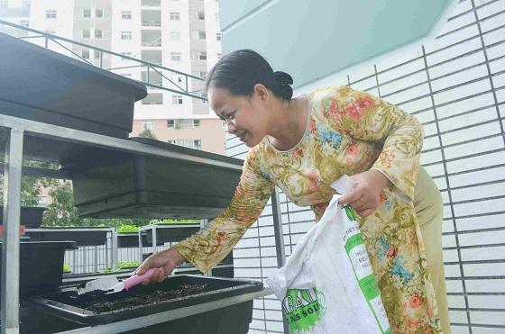 Bé trường tiểu học trồng rau sạch bán cho phụ huynh-18