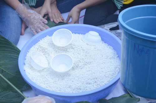 TP.HCM: Sôi nổi chiến dịch Xuân tình nguyện 2016-20