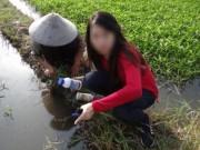 Tin trong nước - Rau muống bị tưới nhớt, ngâm hóa chất gây hại gì?