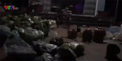 Hà Nội: Biến rau bẩn thành rau an toàn 'tuồn' vào trường học-2