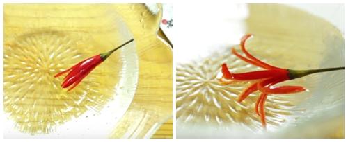 tia hoa tu qua ot chi trong nhay mat - 3