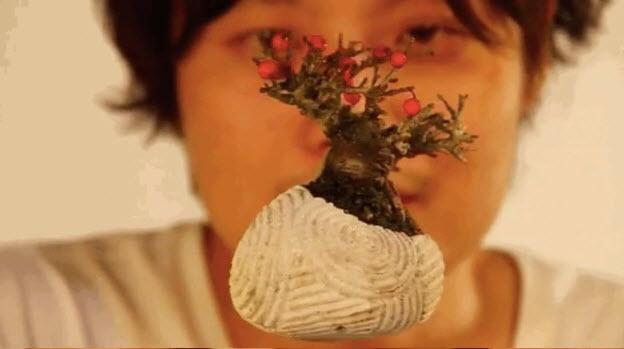 the gioi phat sot voi cay bonsai biet bay 4 trieu dong - 7