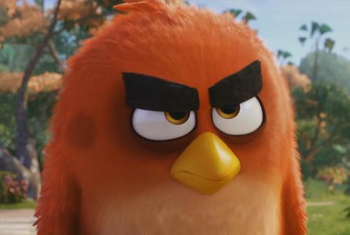 """cuoi rung ron voi trailer """"sieu de thuong"""" cua angry birds - 1"""