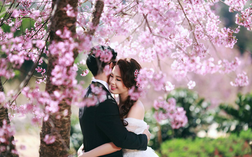Đẹp mê hồn bộ ảnh cưới ngập tràn sắc hoa ngày xuân-5