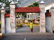 Tin tức - Cảnh quê bình dị giữa Sài Gòn đô hội ngày giáp Tết