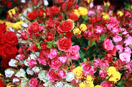 cuoi nam, chi em do xo di cho hoa co nhat ha thanh - 10