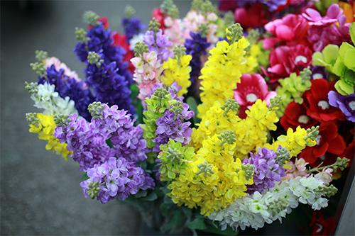 cuoi nam, chi em do xo di cho hoa co nhat ha thanh - 8