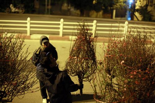 cho hoa dao dem nhon nhip ngay cuoi nam - 9