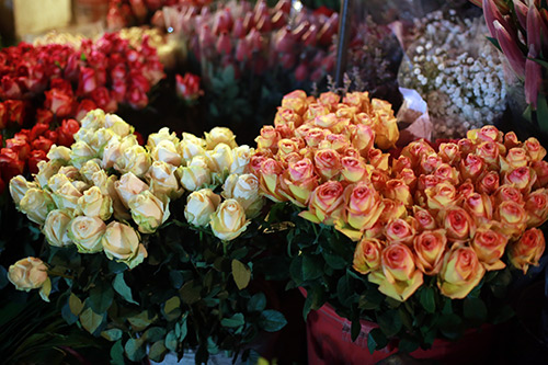 cho hoa quang ba tap nap ngay cuoi nam - 9
