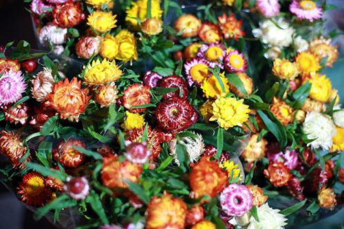 cho hoa quang ba tap nap ngay cuoi nam - 6