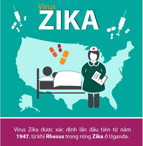 [infographic] nhung dieu nguoi viet phai biet ve virus 'an nao' zika - 1
