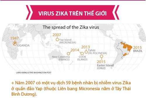 [infographic] nhung dieu nguoi viet phai biet ve virus 'an nao' zika - 2