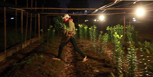 Chợ ly đêm làng Tây Tựu tấp nập ngày cuối năm-11