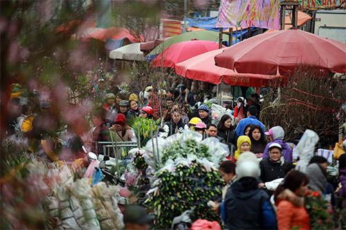 """Chợ hoa Quảng Bá """"nêm"""" chặt người những ngày cuối năm-12"""