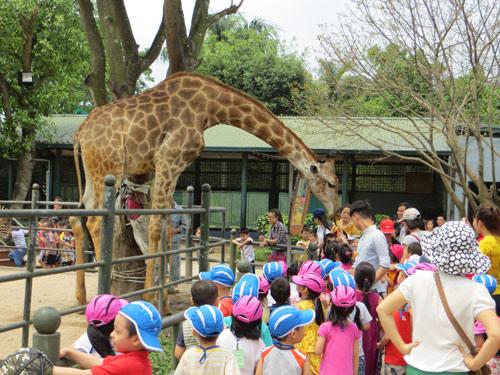 5 địa điểm vui chơi hấp dẫn cho bé du xuân tại Hà Nội-6