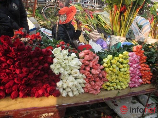 khan hiem, hoa hong valentine tang gia manh - 1