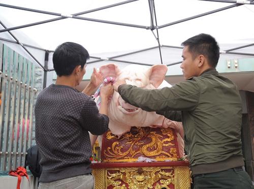 """doc dao le hoi ruoc 18 ong lon """"khong lo"""" xa la phu - 4"""