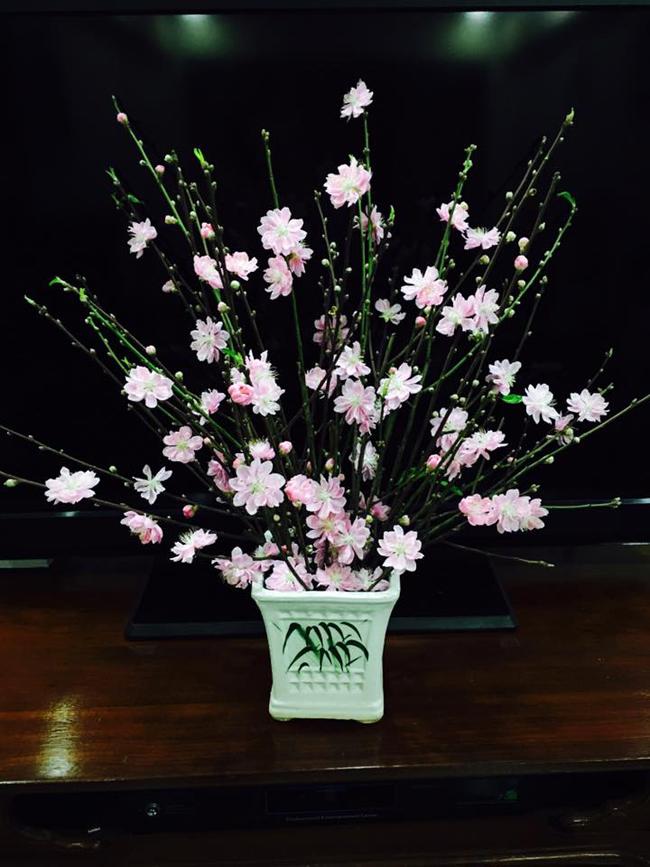 1. Bình hoa của chị Lan Phương