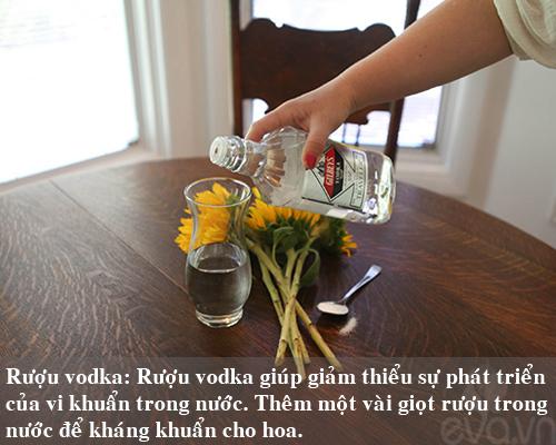 9 bi kip giu hoa tuoi lau me nen thu san - 4