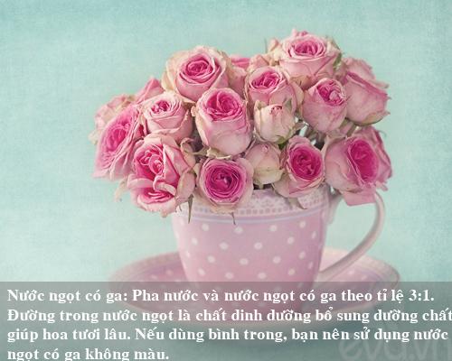 9 bi kip giu hoa tuoi lau me nen thu san - 7