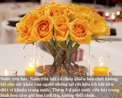 9 bi kip giu hoa tuoi lau me nen thu san - 8