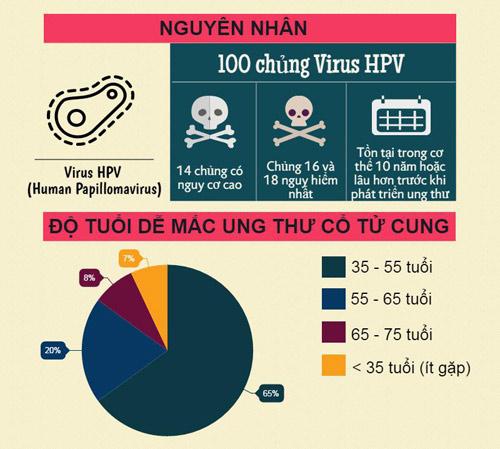 [infographic] - nhung dieu can biet ve ung thu co tu cung - 2