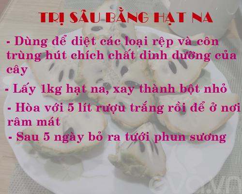 kinh nghiem trong rau, cu, qua trong thung xop (phan 2) - 5