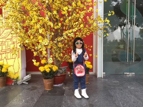 tang gia han - ad79911 - 3
