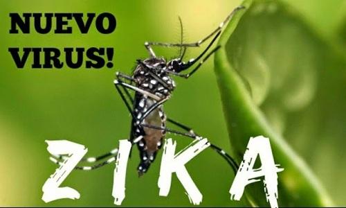 bo y te bac bo thong tin 4 nguoi nhiem virus zika o khanh hoa - 1