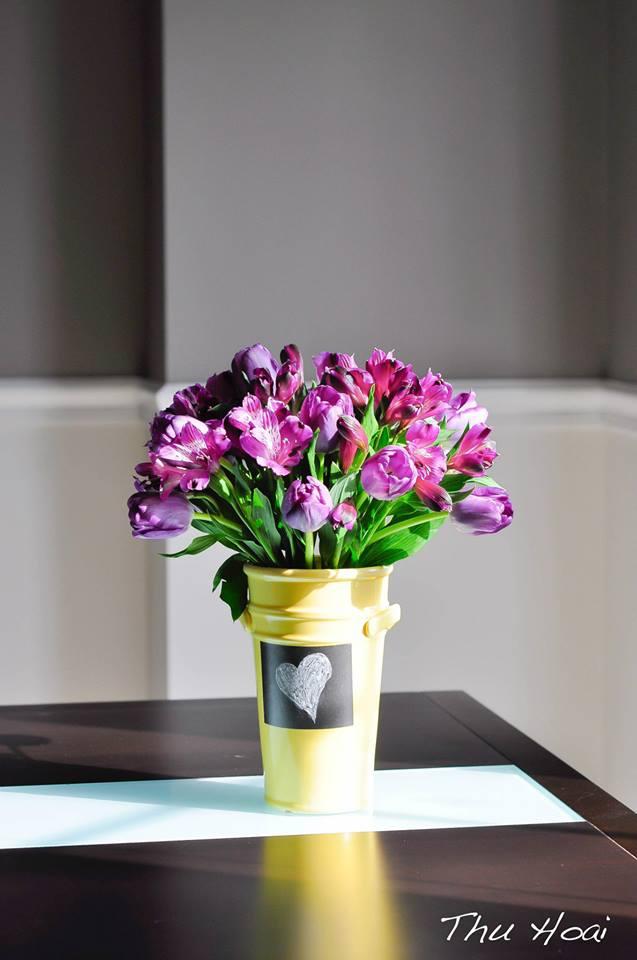 me man tai cam hoa tulip cua me bau viet o my - 9