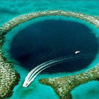 10 thế giới ngầm tuyệt đẹp dưới lòng biển sâu