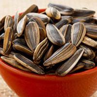Ăn nhiều hạt hướng dương khó có con?