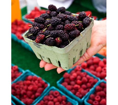 15 loại trái cây cực tốt cho sức khỏe chị em (P.1) - 4