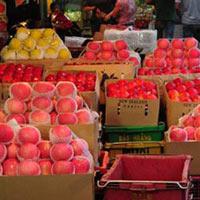 """""""Hô biến"""" táo độc thành trái cây Úc, Thái Lan"""