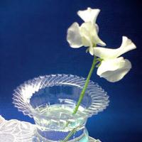 """""""Đổi phận"""" cho chai nhựa thành... lọ hoa"""