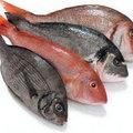 Bếp Eva - Mẹo giữ cá tươi và giảm mùi tanh