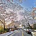 Xem & Đọc - Những địa điểm hẹn hò lãng mạn nhất Seoul