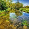 Xem & Đọc - Cảnh tuyệt đẹp dưới những dòng sông 'trinh nữ'