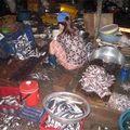 Mua sắm - Giá cả - Bì lợn làm nem chua, đặc sản từ cá thối