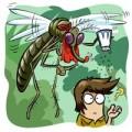 Làm mẹ - Sự tích con Muỗi